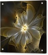 Glowing In Silver And Gold Acrylic Print