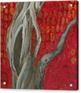 Gnarly Autumn Tree Acrylic Print
