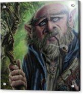 Gnome Wizard Acrylic Print