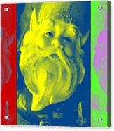 Gnomes In Crazy Color Acrylic Print