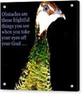 Goals Acrylic Print