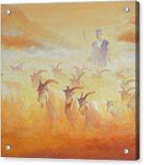 Goat Herder Acrylic Print