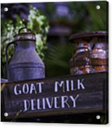 Goat Milk Delivery Acrylic Print