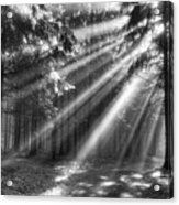 God Beams Acrylic Print
