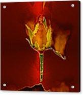 Goddes Of Fire Acrylic Print
