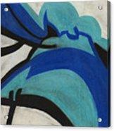 God's Eye Dyptych 2 Acrylic Print