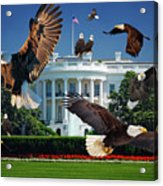 Gods Generals In Washington Acrylic Print