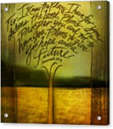 God's Plans Acrylic Print by Shevon Johnson