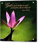 God's Spirit Acrylic Print