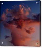 Godzilla Cloud-debbie-may Acrylic Print