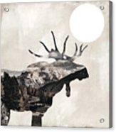 Going Wild Moose Acrylic Print