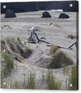 Gold Beach Oregon Beach Grass 18 Acrylic Print