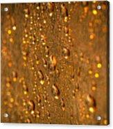 Gold Drops Acrylic Print