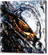Gold Gator Eye Acrylic Print