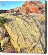 Gold Lava Flow In Valley Of Fire Acrylic Print
