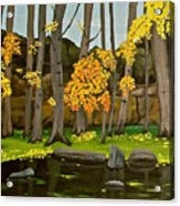Gold On The River Meadow Park Lyons Co Acrylic Print