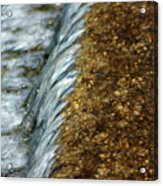 Gold Rush Abstract Acrylic Print