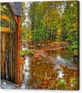 Golden Autumn Days Acrylic Print
