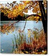 Golden Autumn Lake Acrylic Print