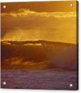 Golden Backlit Wave Acrylic Print