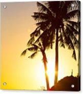 Golden Beach Tropics Acrylic Print