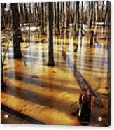 Golden Brown Frozen Pond Acrylic Print