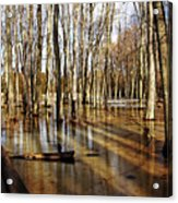 Golden Brown Pond Acrylic Print