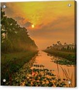 Golden Canal Morning Acrylic Print