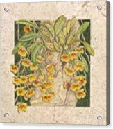 Golden Cascade Acrylic Print