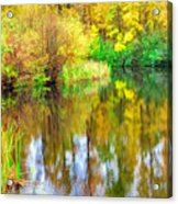 Golden Creek Acrylic Print