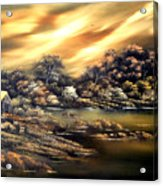 Golden Daze.sold Acrylic Print by Cynthia Adams