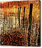 Golden Decay Acrylic Print