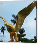 Golden Eagle Take Off Acrylic Print