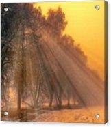 Golden Early Morning Sun Rays On The Farm Chesterhurst L B Acrylic Print