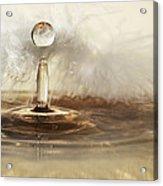 Golden Featherdrops Acrylic Print