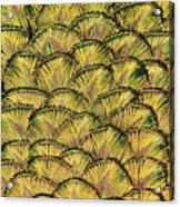 Golden Feathers Acrylic Print