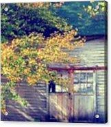Golden Fall Foliage  Acrylic Print