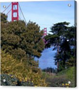 Golden Gate Bridge From Visitor Center Acrylic Print