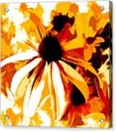 Golden Glow Of Summer Acrylic Print
