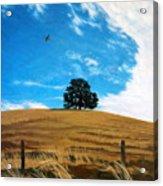 Golden Hills Summer Sky Acrylic Print
