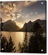 Golden Jenny Lake View Acrylic Print