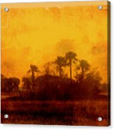Golden Land Acrylic Print