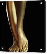 Golden Legs Acrylic Print