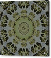 Mandala In Pewter And Gold Acrylic Print