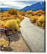 Golden Moments In Mammoth Acrylic Print
