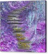 Golden Path Down To Rosslyn Glen Acrylic Print