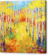 Golden Path Acrylic Print by Marion Rose