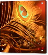 Golden Peacock Feather Acrylic Print
