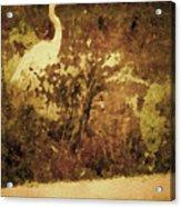 Golden Pond Acrylic Print