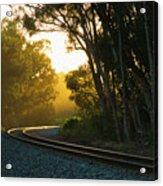Golden Rails  9559l Acrylic Print